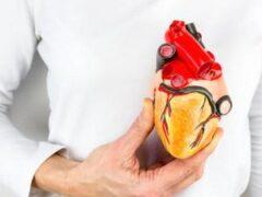 Тихие инфаркты предшествуют смертям от остановки сердца