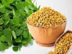 Шамбала – невероятно полезное растение с мистическим названием