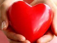 Сердце не билось 25 минут: оживить сахалинского пациента помог кардиомассажер