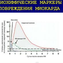 Повышение уровня тропонинов