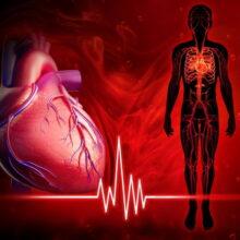 Причина и симптомы заболеваний сердца