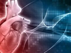 Средства на ликвидацию заболеваний сердечно-сосудистой системы