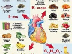 Полезные вещества и продукты для сердца и сосудов